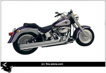 "AUSPUFFANLAGE V&H BIG SHOT LONG ""THOR I"" 2 1/2 ZOLL CHROM / SOFTAIL BJ 17 MIT EG-ABE EURO 4"